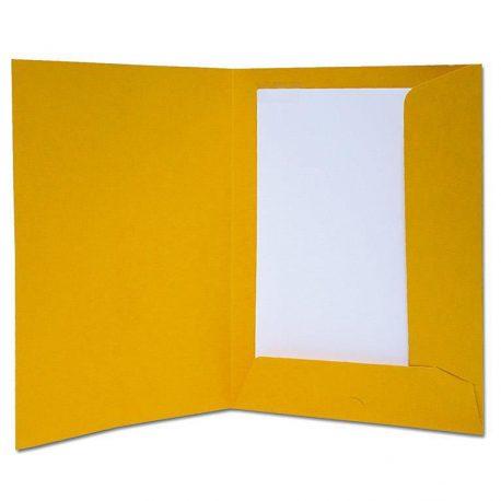 Φάκελος Παρουσίασης Πρεσπάν Next Κίτρινος 03401