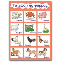 Ekpaideytikh aphisa 'Ta zwa ths pharmas' 50x70cm Next
